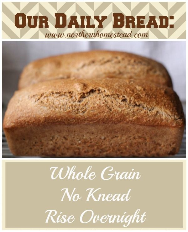 Our Daily Bread - Whole Grain, No Knead, Rise Overnight - Simple and ...