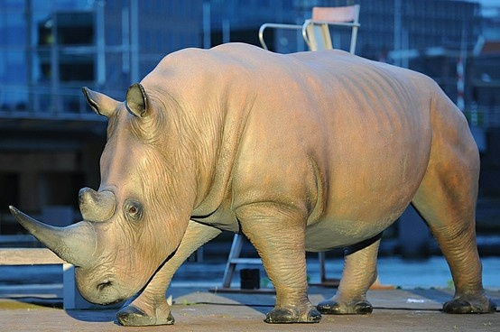 The rhinoceros. It has been sailing through Amsterdam in a small boat during the days before the Holland Festival. Just to make people curious;)