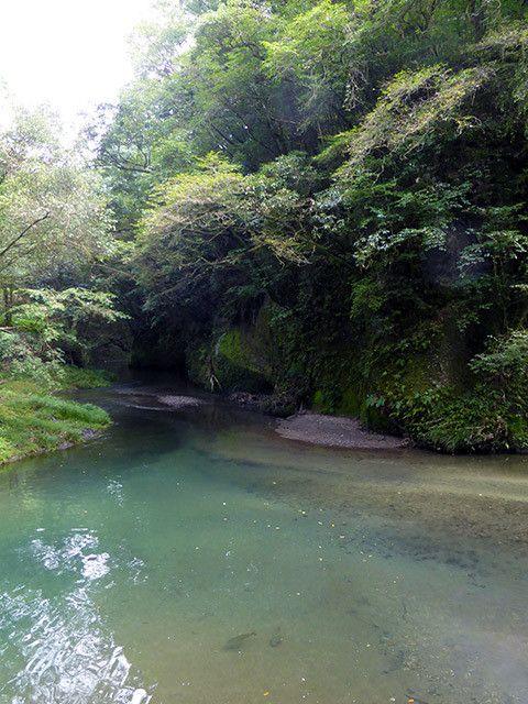 大出水の湧き水(鹿児島県霧島市)