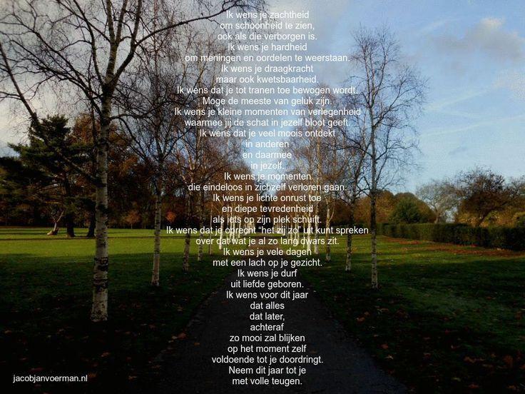 #nieuwjaar #nieuwjaarswens #wens #tekst #gedicht #poezie #afscheid #liefde #moederschap #kind