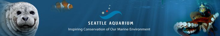 Seattle Aquarium  Teacher Resources and Workshops page link  == Tools to help you share the wonder of the marine environment with your students.
