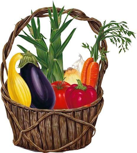 Корзина с овощами картинки