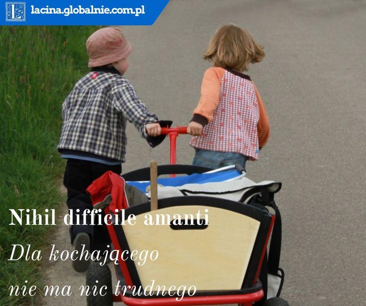Najpiękniejsze sentencje o miłości  Nihil difficile amanti - Dla kochającego nie ma nic trudnego http://lacina.globalnie.com.pl/sentencje-o-milosci/ #miłość #sentencje #łacina #złotemyśli #cytaty #sentencjeomiłości