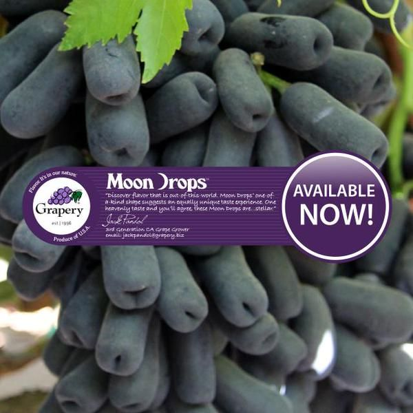 Moon Drop Grapes from the Grapery - black, seedless with a wonderful flavor.  My new favorite grape!