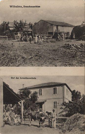 22 best images about German templar in Wilhelma il on Pinterest