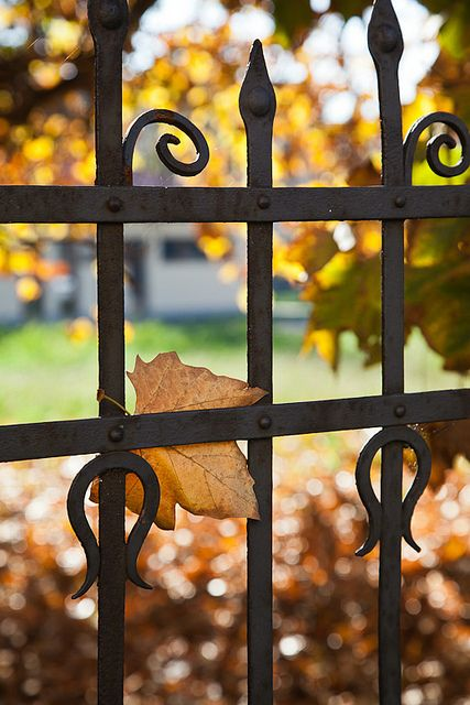 Autumn's Gate