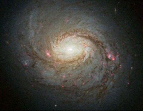 Messier 77. Sterrenstelsel ligt zo'n 45 miljoen lichtjaar van ons verwijderd