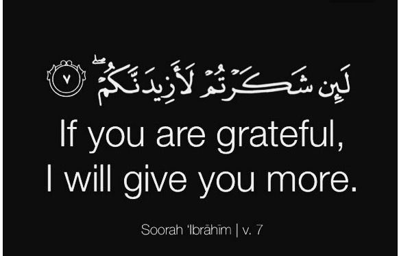 be grateful for everything you have