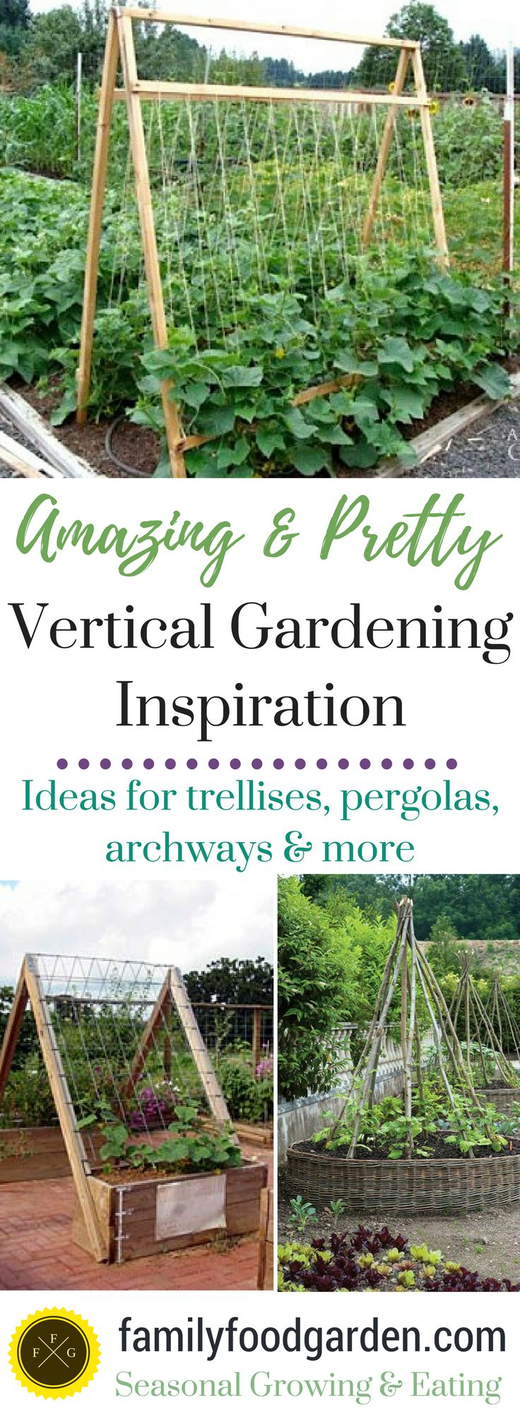 Best 25+ Vertical vegetable gardens ideas only on Pinterest | Tiny ...
