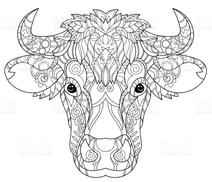 Hand drawn doodle outline cow head decorated with ...