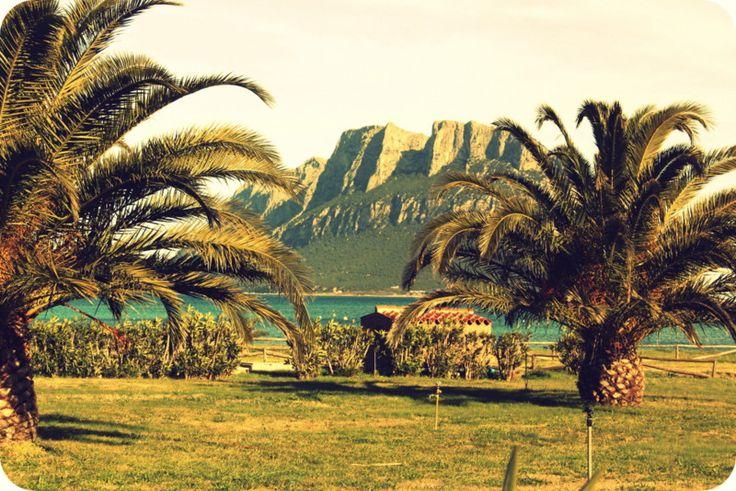 porto san paolo, Sardinia <3