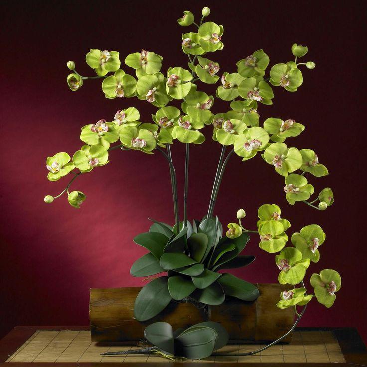 Phalaenopsis Silk Orchid Flower w-Leaves (6 Stems)