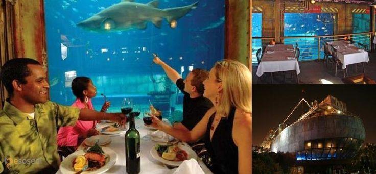Ресторан Карго Холд – #Южно_Африканская_Республика #Квазулу_Натал (#ZA_ZN) Не знаю, как в ресторане Cargo Hold, что в южно-африканском городе Дурбан, с кухней. Но оформление, стилизация под корабль-призрак, просто потрясающее! http://ru.esosedi.org/ZA/ZN/1000107242/restoran_kargo_hold/