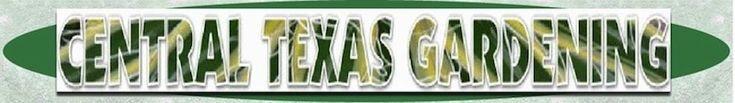 A DREAM GARDEN! | Central Texas Gardening