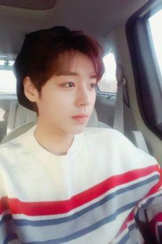Park Jinhoo