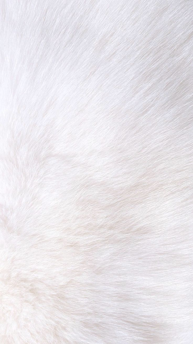 White fur iPhone wallpaper Carta da parati bianca