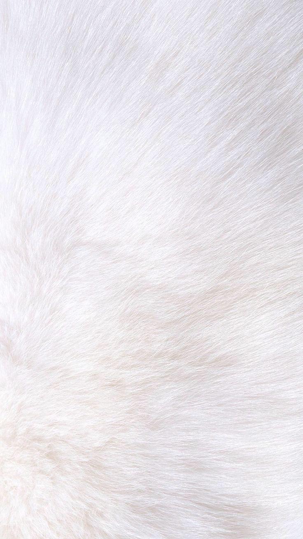 White fur iPhone wallpaper