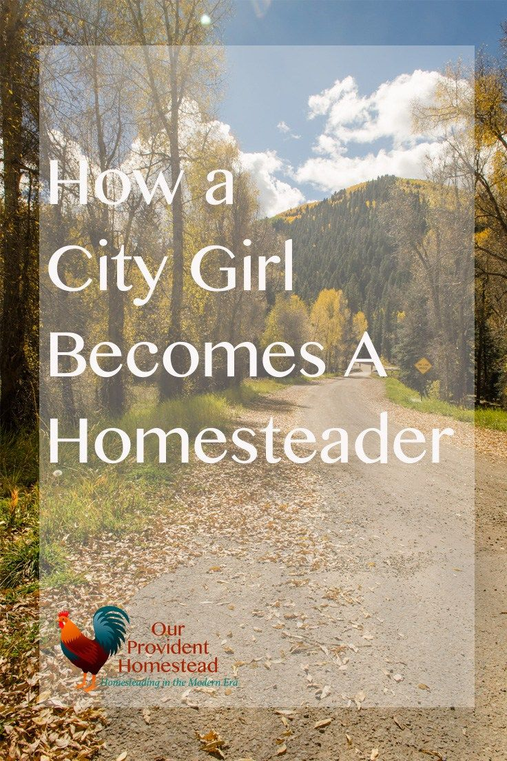 How a city girl becomes a homesteader. Homesteading | Moving to the Country www.ourprovidenthomestead.com