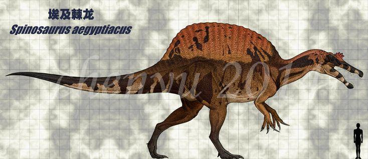 Spinosaurus aegyptiacus by sinammonite.deviantart.com on @DeviantArt