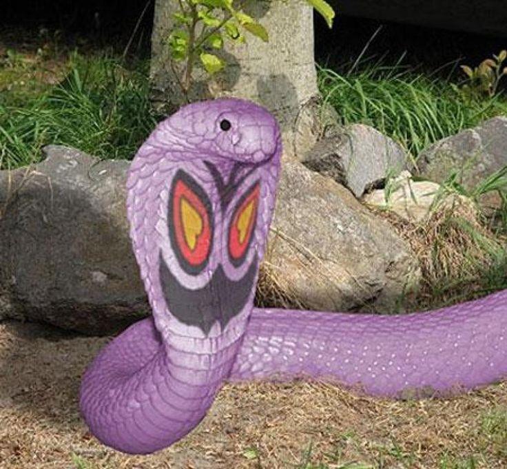 abo-le-pokemon-serpent-au-corps-violet.j