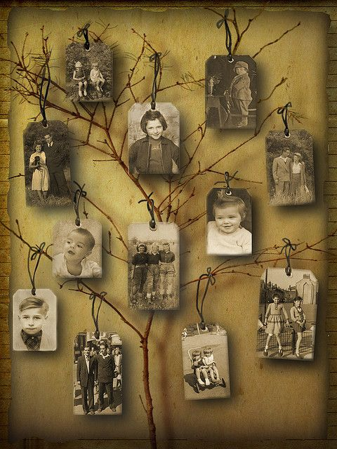 Copy old (and/or new) photos onto tags and tie to branches of a small tree branch. Mount onto a piece of craft paper (or other appropriate background) and display inside a shadowbox frame.