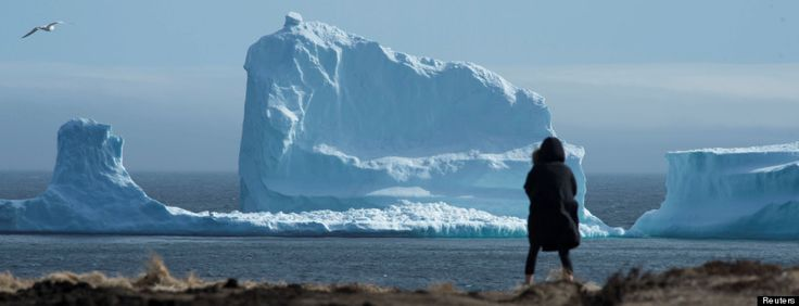 'Iceberg Alley' Is Spectacular This Year.. For A Sad Reason
