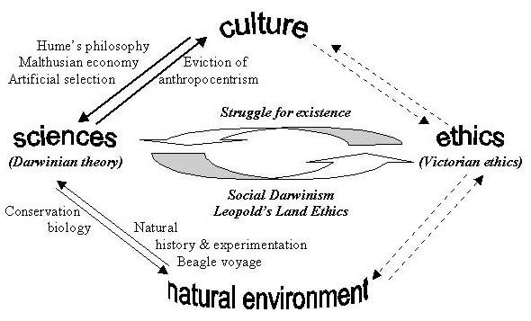 relationship between society culture and natural resources