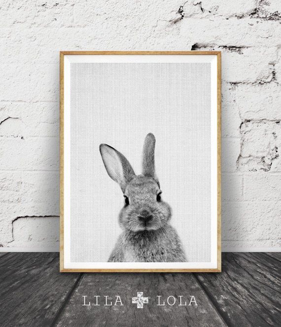 Rabbit Print, Woodlands Decor, Nursery Rabbit Wall Art, Black and White Animal Print, Printable Art, Black and White Nursery Woodlands Bunny by lilandlola on Etsy https://www.etsy.com/listing/249947446/rabbit-print-woodlands-decor-nursery