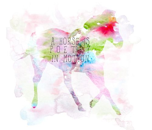 horse quotes with horse images - Buscar con Google