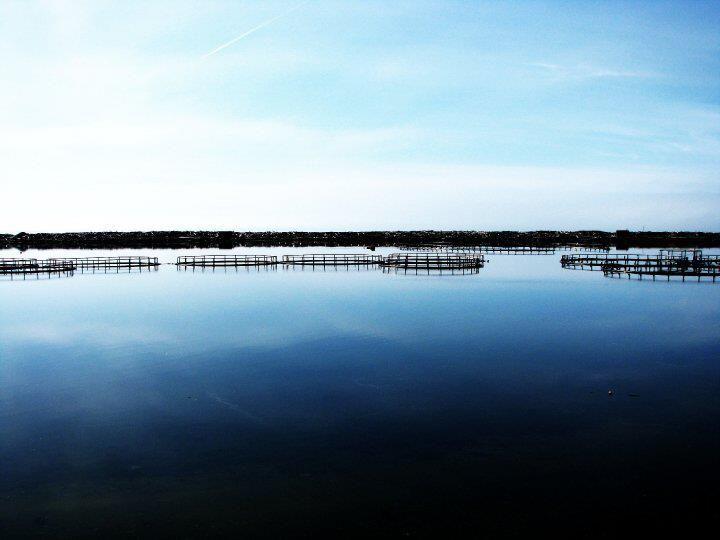 Dark Harbour Pond, Grand Manan, New Brunswick, Canada by Morgan Guptill