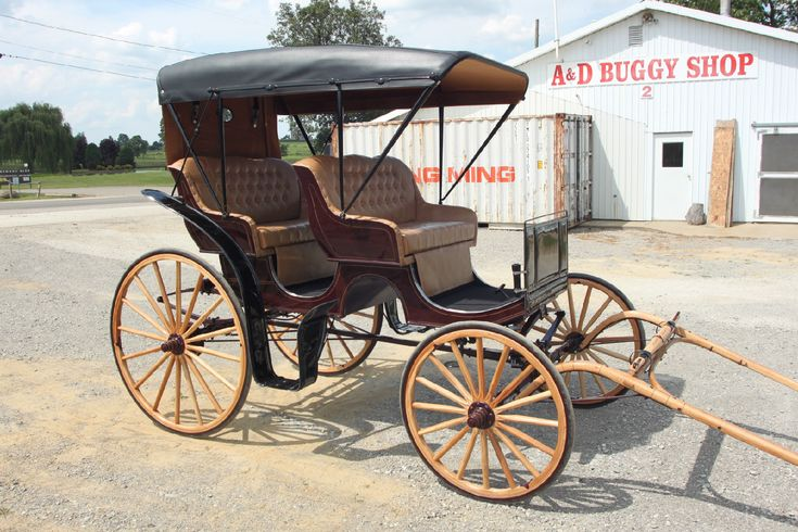 Horse Drawn Surrey Carriage Buggy Wagon Cart Sleigh