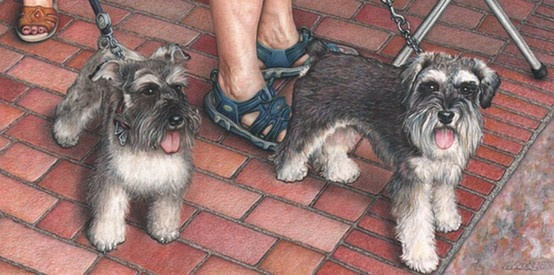 Dan Stancliff      COLORED PENCIL: Illustrations Dogs, Dstancliff Jpg 800 398, Stancliff Colored, Art Pencil Art, Colored Pencils, Dan Stancliff