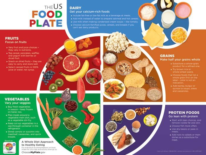 35 best images about MyPlate for Adults on Pinterest | Plates ...