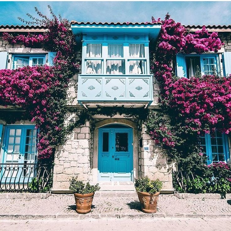 Alacati'nin sokaklarini dolasirken karsiniza cikan bu muhtesem goruntu @asmahanotel 'e ait. Güleryüz, limonata, kahvaltı, 5 çayı, odaları, bahçesi çiçekleri, müzikler, personelin ilgisi en onemli ozellikleri buranin. ☎️ 0232-7167642  www.kucukoteller.com.tr/asma-han-otel #alacati #alaçatı  @neskirimli