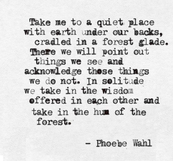 Take me to a quiet place ~ with earth under our backs ~ cradled in a Forest glade ~ There we will point out things we see ~ and acknowledge those things we do not ~ In solitude we take in the wisdom offered in each other ~ and take in the hum of the Forest ~ Phoebe Wahl ~❤~