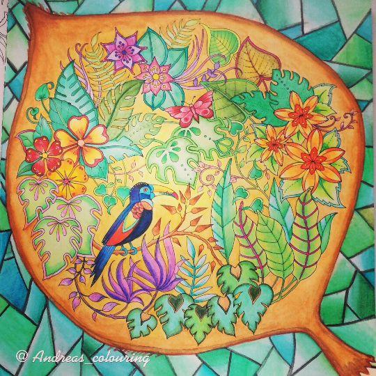 438 Best Images About Johanna Basford Magical Jungle On Pinterest