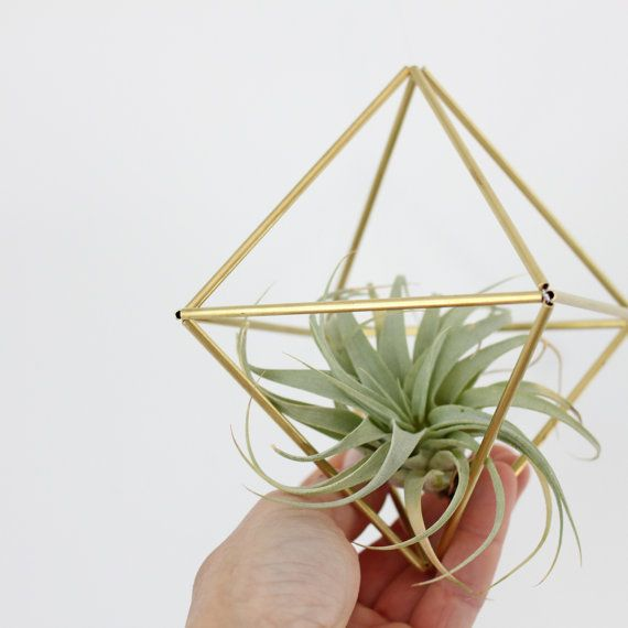 Brass himmeli air plant holder no 1 modern hanging for Geometric air plant holder