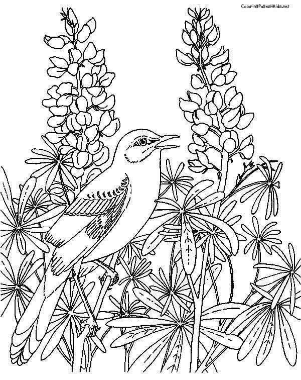 arterapia flowers