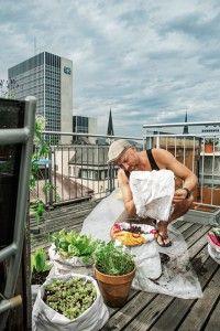 Experimentierfreudig und entspannt macht sich eine neue Generation urbaner Gärtner ans Werk. Ihre Gärten sind da, wo sie leben, mitten in der Stadt. Sie bepflanzen ihre Dachterrassen, Balkone und Veranden mit Gemüsen und Salaten: oder eben mit Kartoffeln auf dem Balkon.