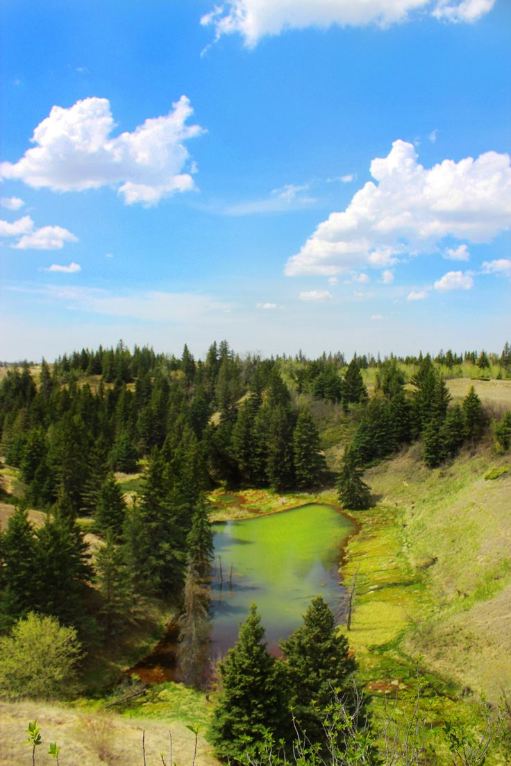 The Devil's Punchbowl in Spruce Woods Provincial Park. #exploremb