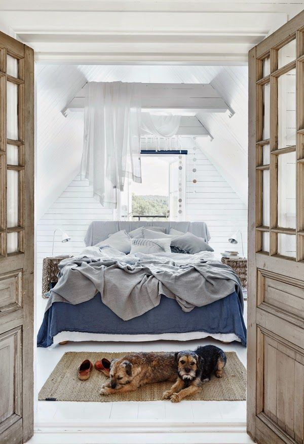 Terriers in a beautiful bedroom. A cottage in the Stockholm archipelagos