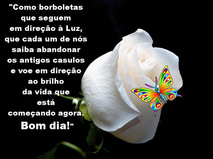 """Bom Dia Luz Do Dia: #frase #pensamento #bomdia """"Como Borboletas Que Seguem Em"""