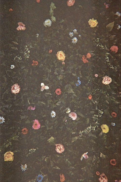 Vintage floral gardens.Dark Floral, Pattern, Nature, Colors, Soft Grunge, Little Flower, Vintage Floral, Flower Patches, Flower Power