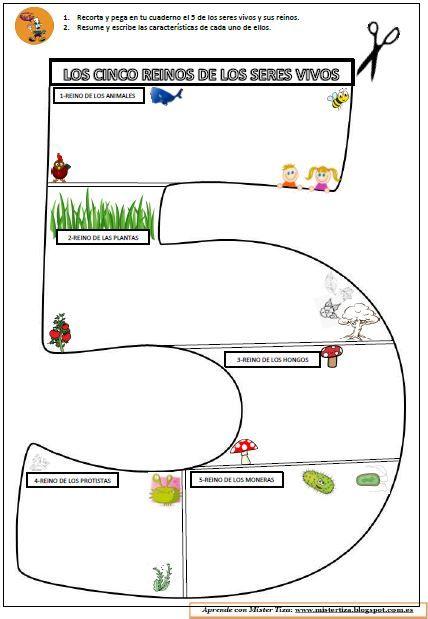 La clasificación de los seres vivos se divide en cinco reinos que conocemos bien: animales, plantas, hongos, protistas y moneras. ¿Qué pod...