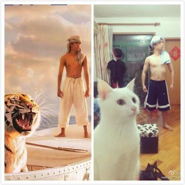 Life of Pi | Life of a guy