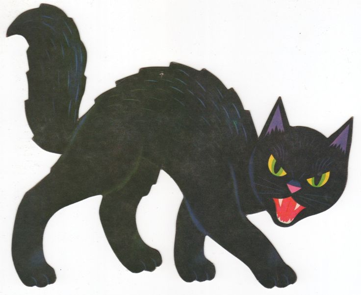 this black cat decoration still might be floating around in the holiday closet - Halloween Cat Decorations