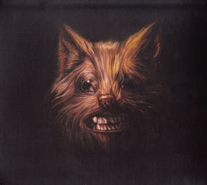 Swans - The Seer at Discogs