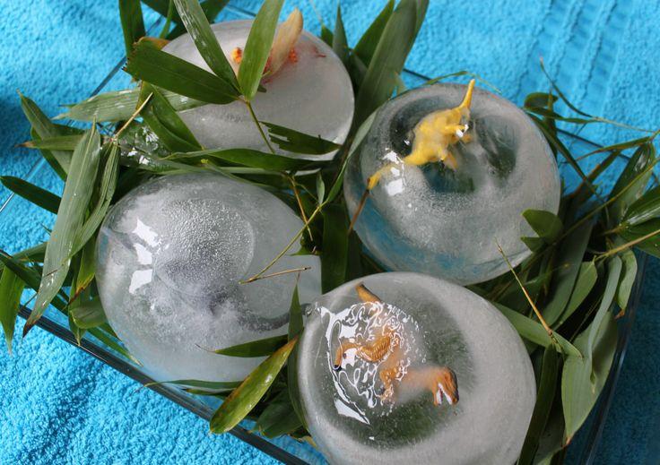 Je kunt heel gemakkelijk bevroren dinosauruseieren maken die je kind vervolgens kan smelten met behulp van warm water. Een ideale én leerzame activiteit.