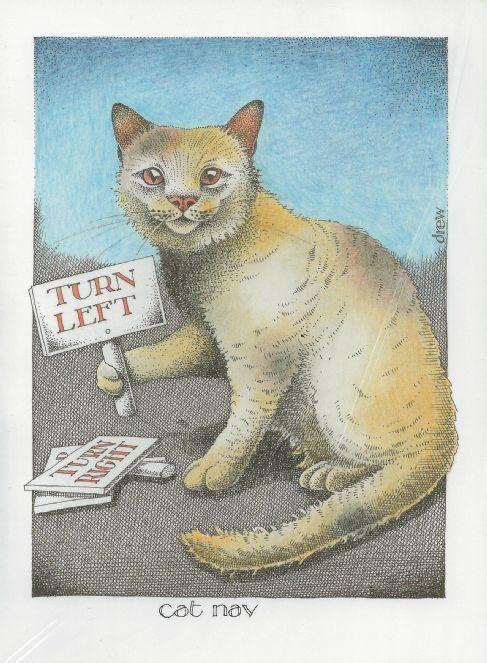 Cat Nav - by Simon Drew
