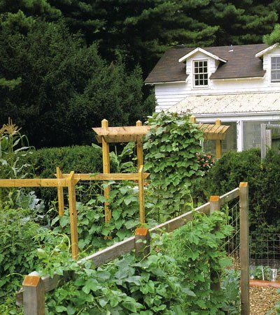 a wooden tripods or trellises for a small garden - Garden Trellises